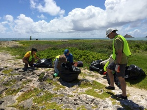 Volunteers helping to pull out invasive plants at Popoia island in Kailua